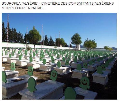 Cimetierre algerien